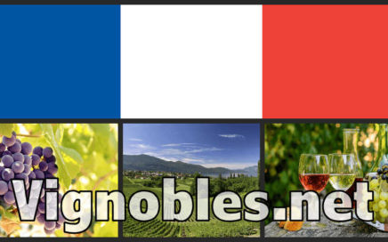 vignobles.net vignobles .net vineyards Concept Names French domain name for sale at Sedo
