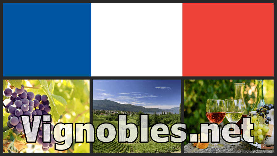 vignobles.net Vignobles .net French vineyards domain name for sale at Sedo by Concept Names